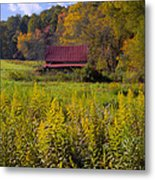 In The Heart Of Autumn Metal Print by Debra and Dave Vanderlaan