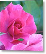 In The Pink Metal Print by Rona Black