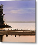 In The Quiet Morning Metal Print by Bill Cannon
