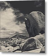 In This Strange Land Metal Print by Laurie Search