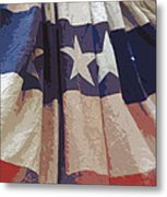 Independence Day Metal Print by Marcia Mauskopf