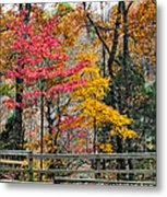 Indiana Fall Color Metal Print by Alan Toepfer