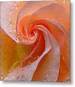 Innocent Beauty Metal Print by Juergen Roth