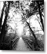 Into The Unknown Metal Print by Floyd Menezes