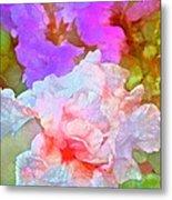 Iris 60 Metal Print by Pamela Cooper