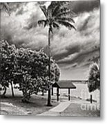Isaac At The Inlet Metal Print by Don Youngclaus