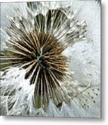 Its A Small World Metal Print by JC Findley