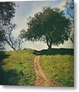 It's Time To Get Up That Hill Metal Print by Laurie Search