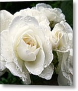 Ivory Rose Bouquet Metal Print by Jennie Marie Schell