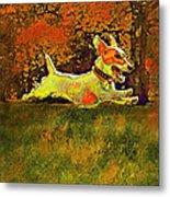 Jack Russell In Autumn Metal Print by Jane Schnetlage