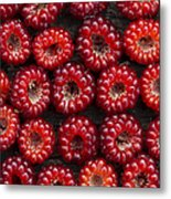 Japanese Wineberry Pattern Metal Print by Tim Gainey