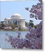 Jefferson Memorial - Cherry Blossoms Metal Print by Mike McGlothlen