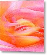Joy - Rose Metal Print by Ben and Raisa Gertsberg