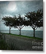 Just Another Gloomy Day Metal Print by Bedros Awak