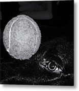 Keep Your Eye On The Ball Metal Print by Roger Wedegis