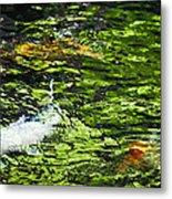 Koi Pond Metal Print by Christi Kraft