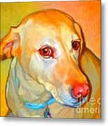 Labrador Painting Metal Print by Iain McDonald