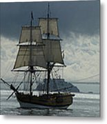 Lady Washington Metal Print by Sabine Stetson