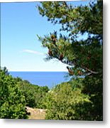 Lake Michigan From The Top Of The Dune Metal Print by Michelle Calkins