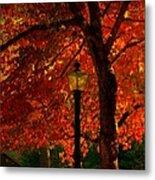 Lantern In Autumn Metal Print by Susanne Van Hulst