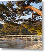 Leaning Pine Tree Arashiyama Kyoto Japan Metal Print by Colin and Linda McKie