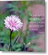 Let Your Light So Shine Metal Print by Deena Stoddard