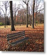 Life's Russet Hue Metal Print by Guy Ricketts