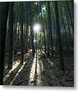 Light At The End Metal Print by Aaron S Bedell