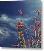 Like Flying Amongst The Clouds Metal Print by Laurie Search