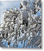 Lilac In Winter Metal Print by Michele Myers