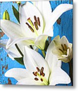 Lilies Against Blue Wall Metal Print by Garry Gay