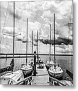 Lined Up At The Dock Metal Print by Kathy Liebrum Bailey