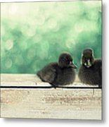 Little Buddies Metal Print by Amy Tyler