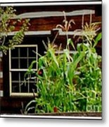 Log Cabin Window Metal Print by Gail Matthews
