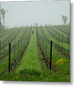 Lone Figure In Vineyard In The Rain On The Mission Peninsula Michigan Metal Print by Mary Lee Dereske