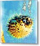 Long-spine Fish Metal Print by Daniel Janda