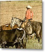 Longhorn Round Up Metal Print by Steven Bateson