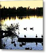 Lost Lagoon At Sundown Metal Print by Will Borden