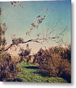 Love Lives On Metal Print by Laurie Search