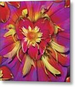 Loveflower Orangered Metal Print by Alixandra Mullins