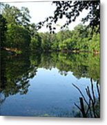 Lovely Lake Metal Print by Cleaster Cotton