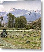 Mancos Colorado Landscape Metal Print by Janice Rae Pariza