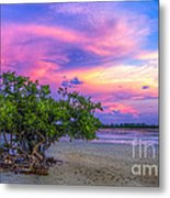 Mangrove By The Bay Metal Print by Marvin Spates