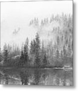 March 2 Metal Print by Doug Fluckiger