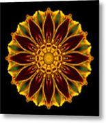 Marigold Flower Mandala Metal Print by David J Bookbinder