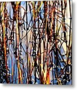 Marshgrass Metal Print by Karen Wiles