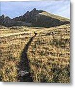Matterhorn Peak - Colorado Metal Print by Aaron Spong