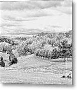 Meadow Bw Metal Print by Chuck Kuhn