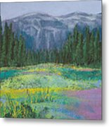 Meadow In The Cascades Metal Print by David Patterson