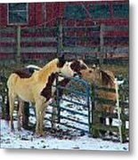 Meeting Of The Equine Minds Metal Print by Julie Dant